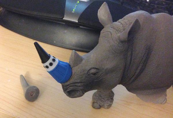 at-rhino-new-horn